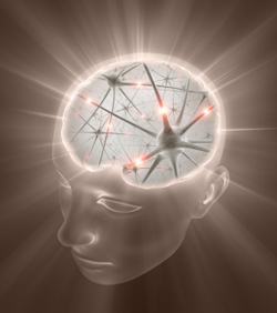 brain-neurons-revolution