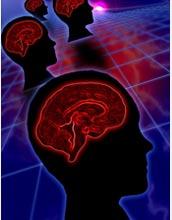 synthetic_brain1_f