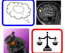 PopuLnks.brain-278x225